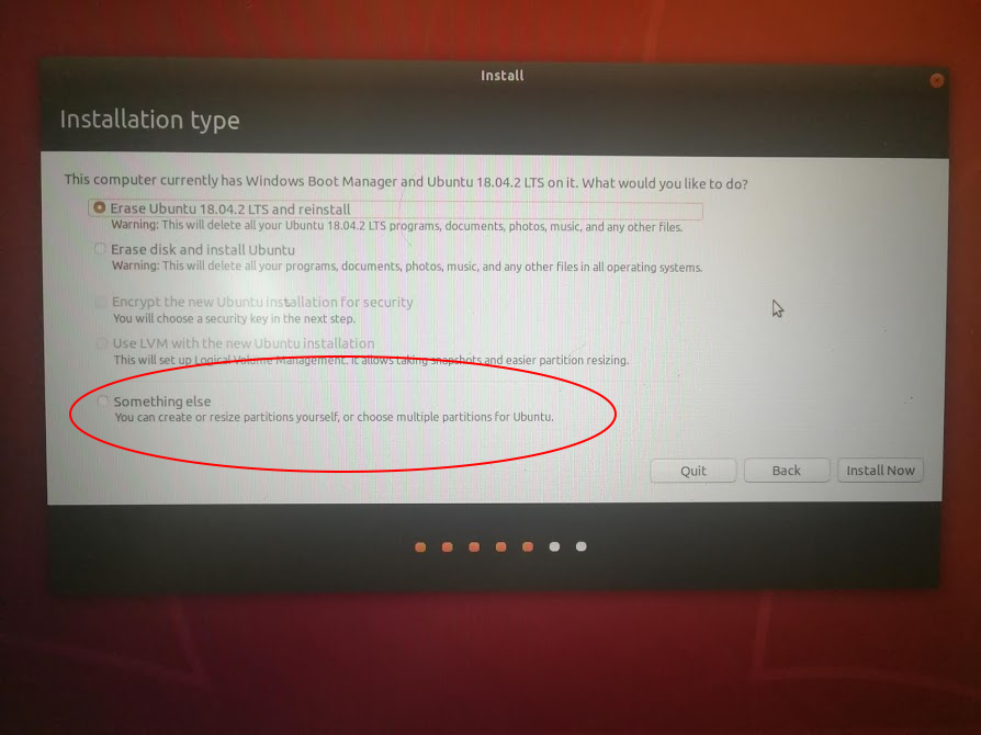 Ubuntuインストール「SomethingElse」