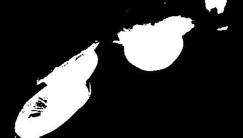 クラゲ画像グレースケールthresh=63時